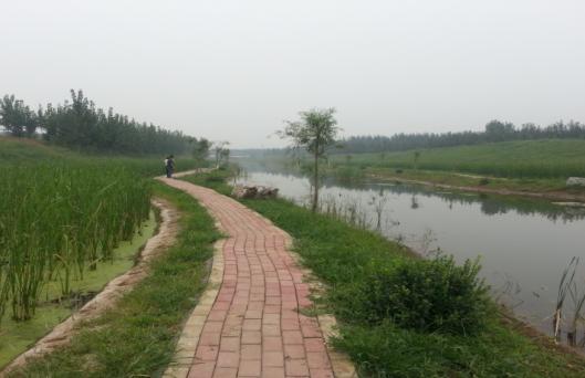水污染问题严峻 生活污水成元凶