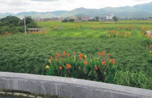 污水处理中常见的几个小问题