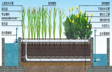 垂直潜流人工湿地系统